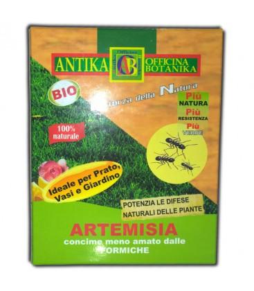 Artemisia (antiformica) 250g